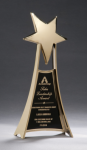 Star Casting Trophy in Gold Tone Finish Metal Trophies